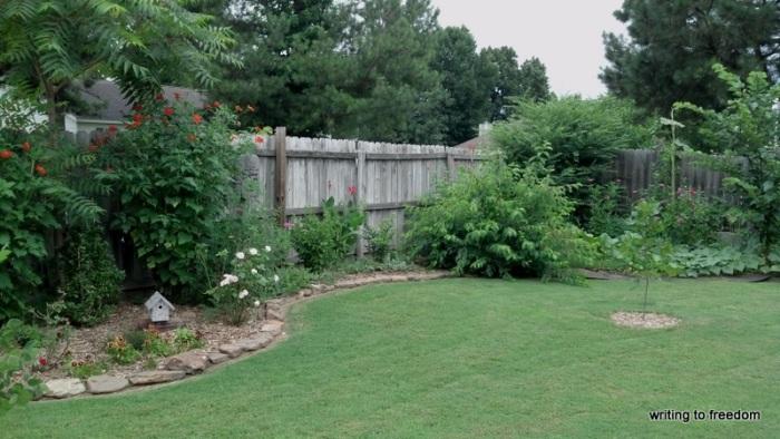 long garden beds