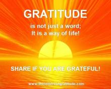 Gratitude, living fully