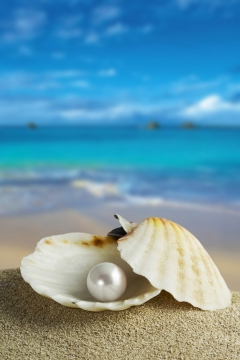 pearls, wisdom poetry,