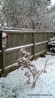 poetry, haiku, snow, silence