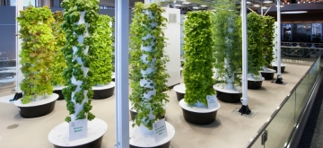 aeroponics, Awesome Stories