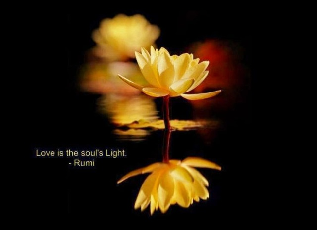 [Image: love-is-the-souls-light-rumi-quotes.jpg?w=640]