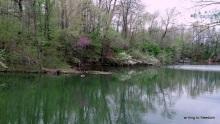 tranquility, flow, peace, poem