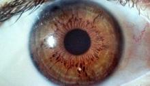 eye gazing, love, poetry
