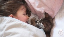pet therapy, Awesome Stories