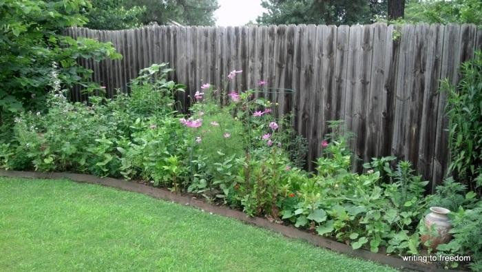 rain, gardens, poetry