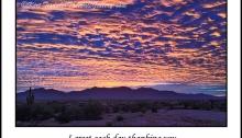 desert, poem