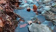 poetry, brook, flowing