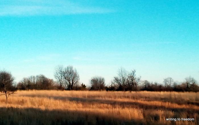 prairie, ponderings, six-word stories
