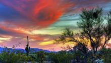 Arizona Beauty, poetry