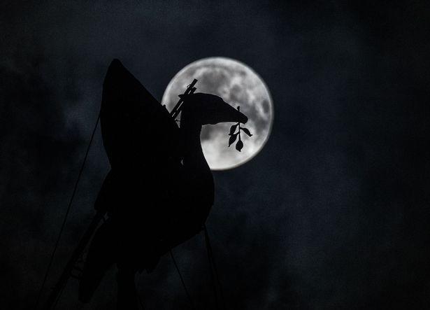 lunar eclipse, James Maloney