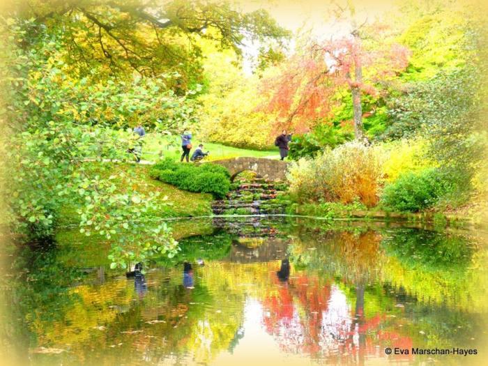 Garden Delights, poetry