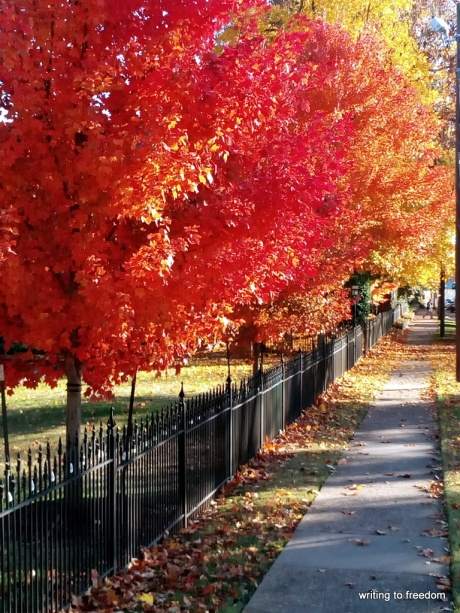 Autumn, colors, poetry