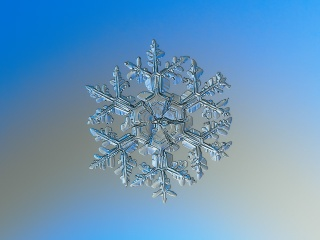 snowflake photography, Awesome Stories