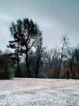 snow, grace, poetry