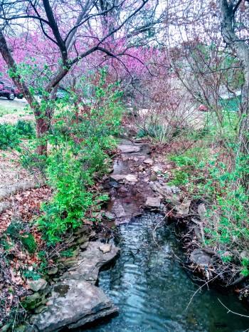 spring, creek, poetry
