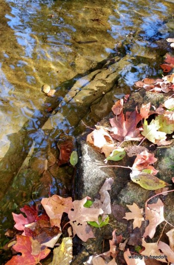poetry, fall, leaves,
