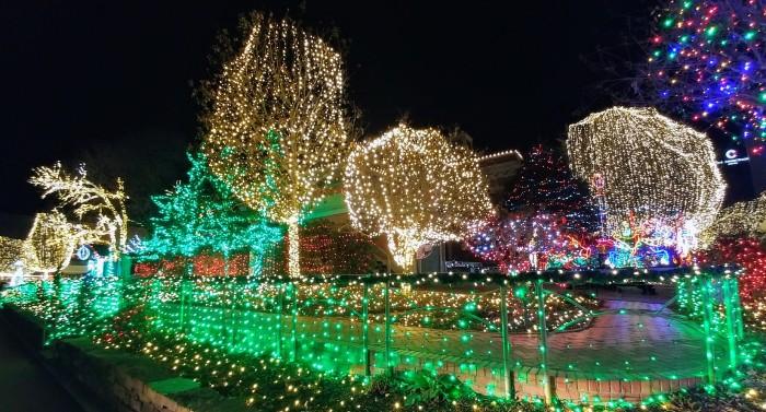 Christmas, lights, poetry
