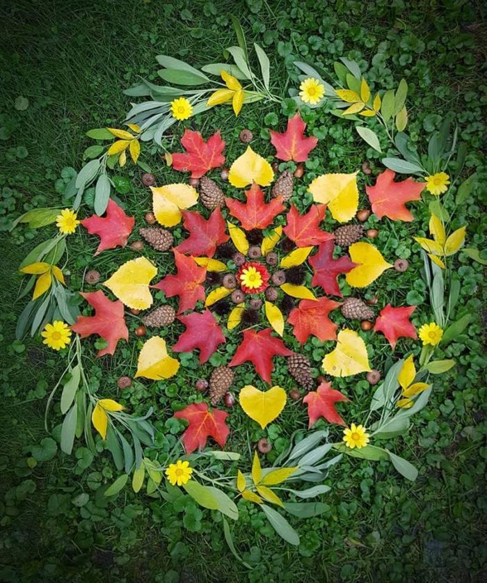 mandala, nature, beauty