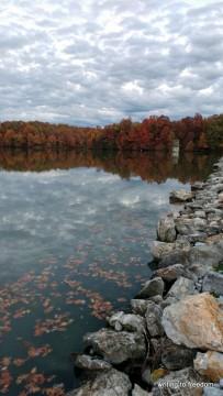 autumn, beauty