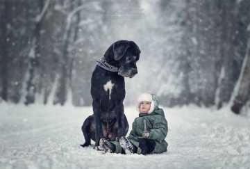 little kids & dogs